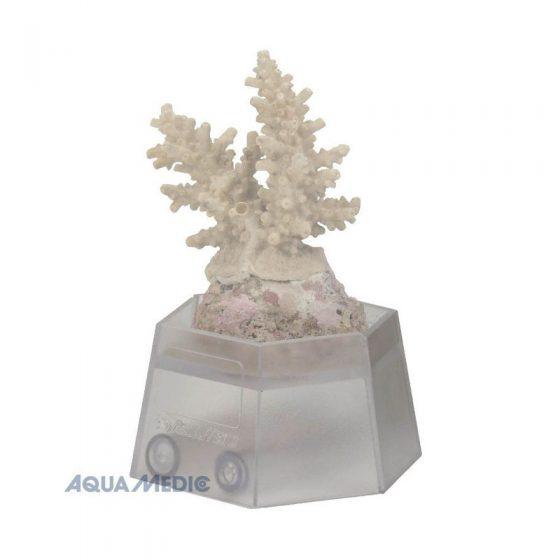 reefgems-_0042_Aqua-Medic-Coral-Holder-Korallenhalter-Reef-Gems